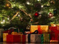 Mangler du den ideelle julegave?