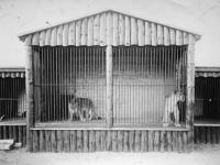 Holstebro Zoologisk Have