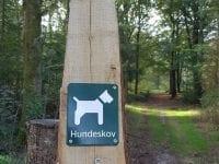 Ny hundeskov: Foto: Holstebro kommune